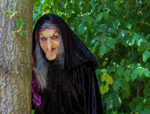 Realmente, ¿todas las brujas son malas?
